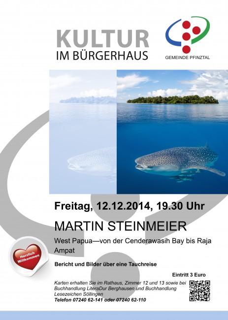 Plakat_Steinmeier
